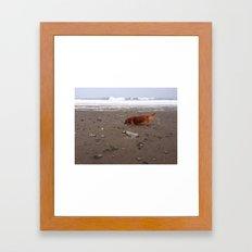 Dachsund on Beach Framed Art Print