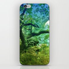 Magical forest iPhone & iPod Skin