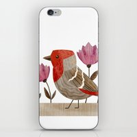 House Finch iPhone & iPod Skin