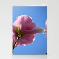 Saucer Magnolia Stationery Cards