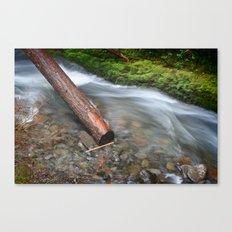 Oneonta Falls Log Canvas Print