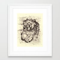 Fluffy Puppy Framed Art Print