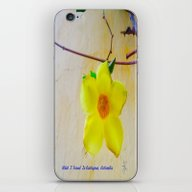 iPhone & iPod Skin featuring What I Found In Cartegen… by ANoelleJay