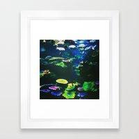 Underwater Paradise Framed Art Print
