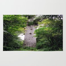 The World's Oldest Wood, Ancient Kauri Rug