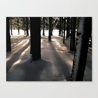 Winter's Promise Canvas Print