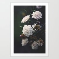 The Most Beautiful View Art Print