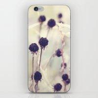 Charcoal stems iPhone & iPod Skin