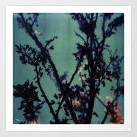 Polaroid Spring Art Print