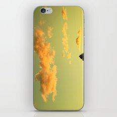 Skocean iPhone & iPod Skin