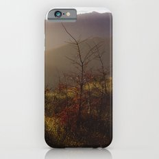 Wilding Pine iPhone 6 Slim Case