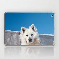 White Husky Laptop & iPad Skin