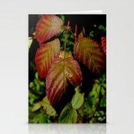 Stationery Cards featuring Autumn Splendor by Kathleen Sartoris