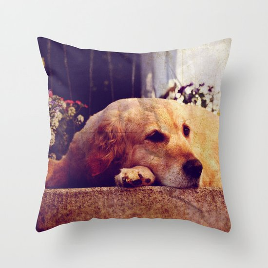 Just hangin' round. Throw Pillow