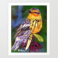 Bird Painting  - Warbler and Blossoms Art Print