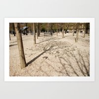 Tree & Shadow Art Print