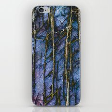 Snowy Forest Night iPhone & iPod Skin
