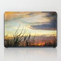 Bayou Sunset iPad Case