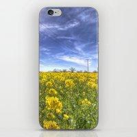 Yellow Fields Of Summer iPhone & iPod Skin
