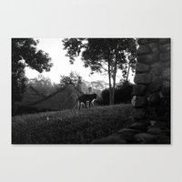 Balinese Monkey Ascendin… Canvas Print