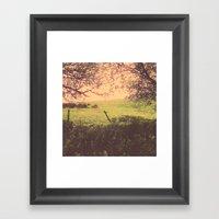 Hypnotic Fields  Framed Art Print