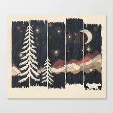 A Starry Night In The Mo… Canvas Print
