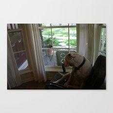 Dawg: 4 Canvas Print
