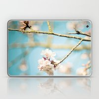 Cherry Blossom, Pink Flowers and Blue Sky. Laptop & iPad Skin
