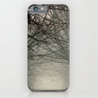 Branches meeting in the fog iPhone 6 Slim Case