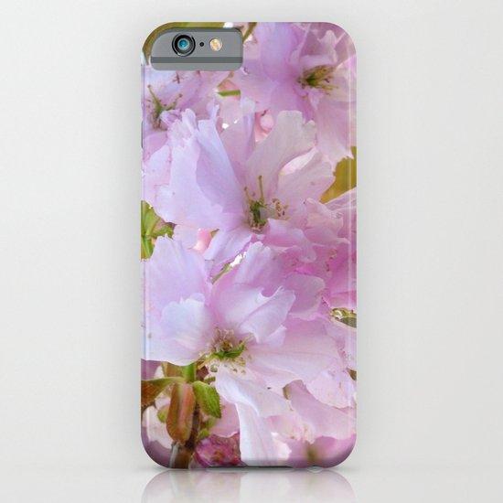 Cherry Blossom iPhone & iPod Case