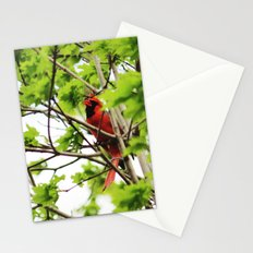 Cardinal II Stationery Cards