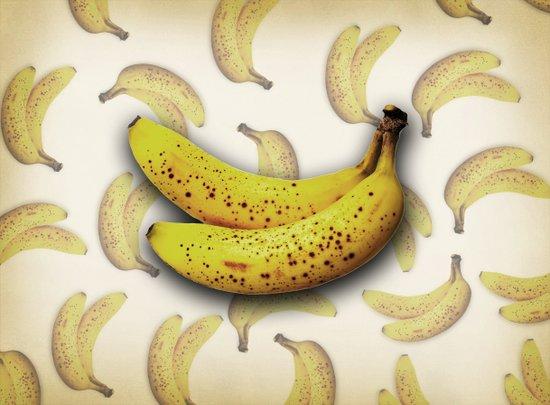 brown bananas Canvas Print