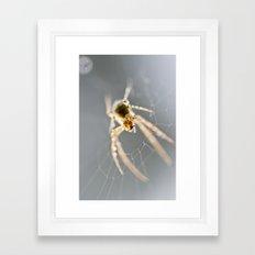 Little Spider Framed Art Print