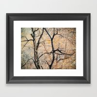 Natures Abstract Framed Art Print