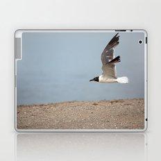 Laughing Gull in Flight Laptop & iPad Skin