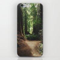 Redwood Trail iPhone & iPod Skin