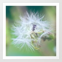 Plant A Wish Art Print