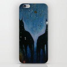 Into The Dark iPhone & iPod Skin