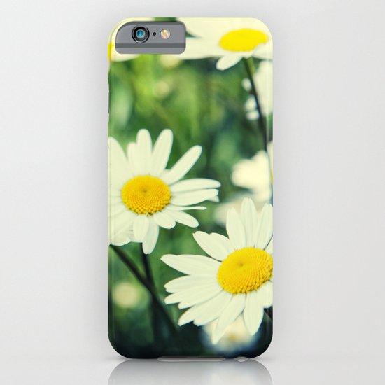 Chamomile flowers iPhone & iPod Case