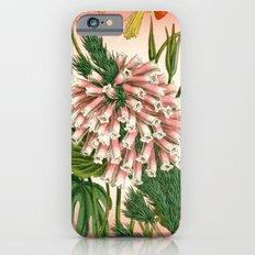 Beautiful Bouquet iPhone 6 Slim Case