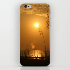 Morning Light iPhone & iPod Skin