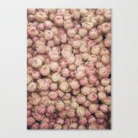 Flower Market 1 - Pink R… Canvas Print