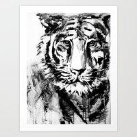 White Tiger Art Print
