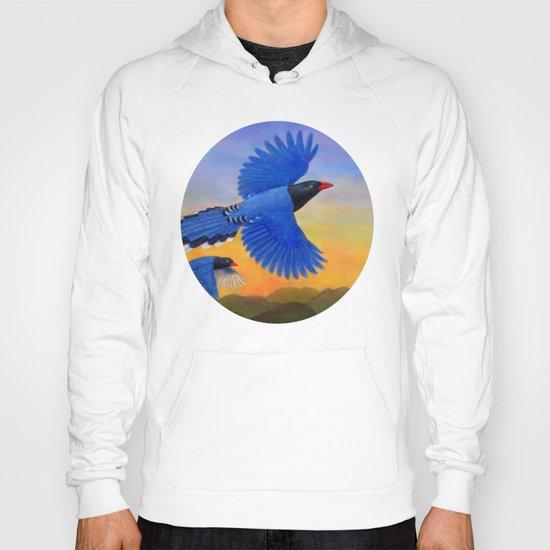 Taiwan Blue Magpie(1) Hoody