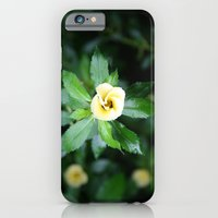 iPhone & iPod Case featuring Open up by halfwaytohear