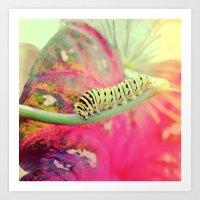It's not a butterfly yet! Art Print