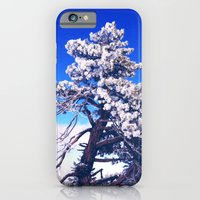 Snow covered trees iPhone 6 Slim Case