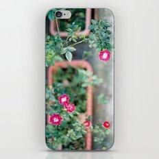 Roadside Flowers iPhone & iPod Skin