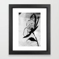 Grunge Poppy Framed Art Print