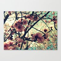 Vintage Blooms Canvas Print